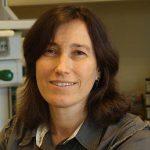 Profile picture of Cintia Roodveldt
